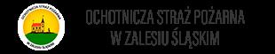 Ochotnicza Straż Pożarna w Zalesiu Śląskim