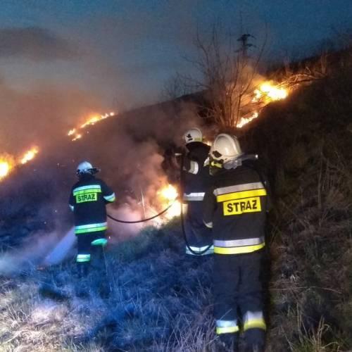 12. Lichynia – Pożar trawy