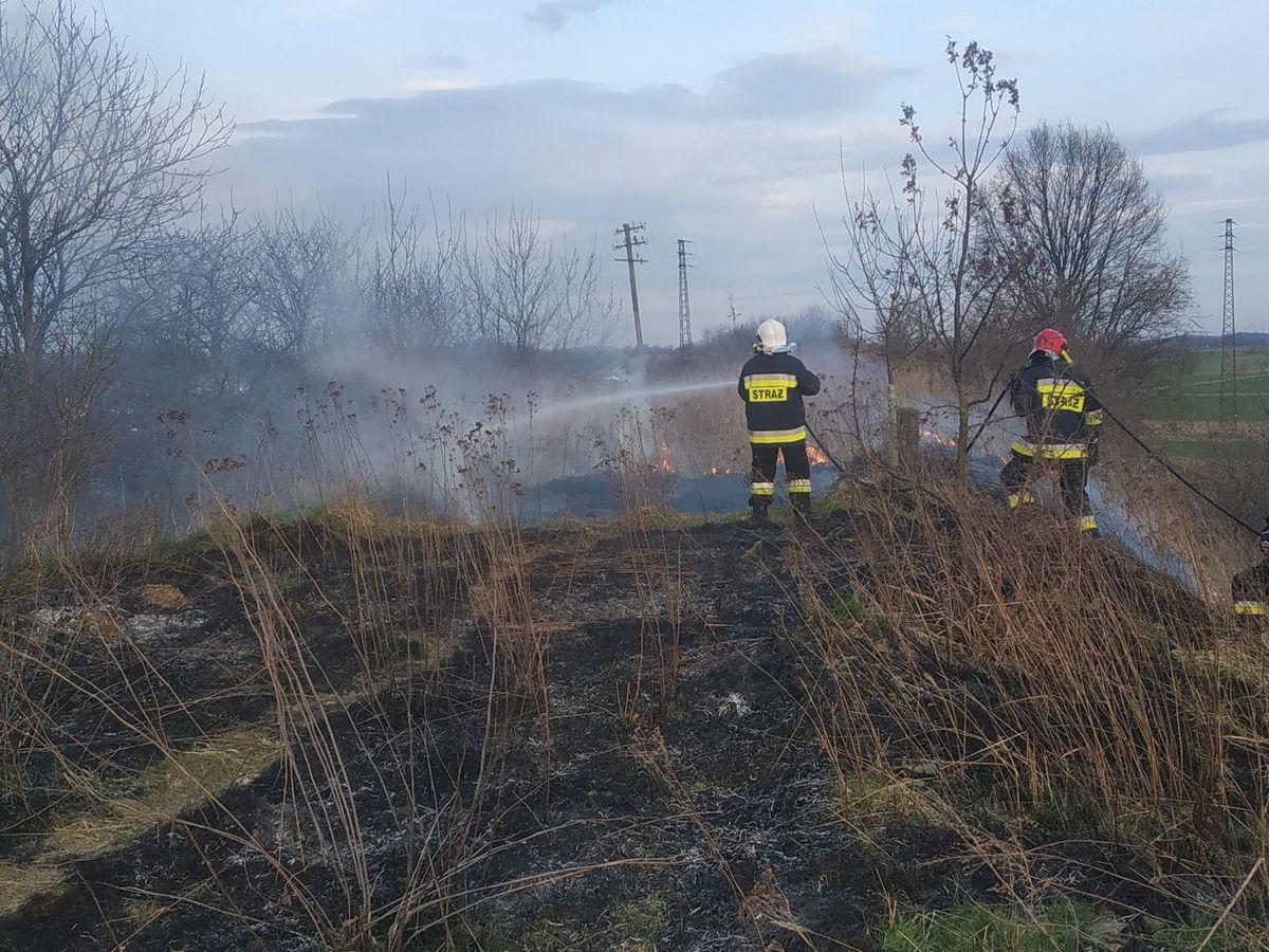 24. Lichynia – Pożar trawy